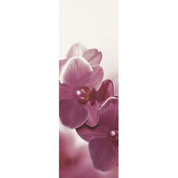 Abrila Bianco inserto Kwiat B 20x60