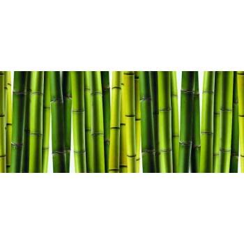 Dekor szklany Bambus 2 25x60