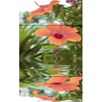 Flora komplet 4*(20x50)