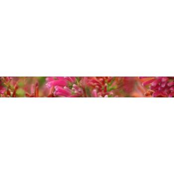 Koliber Rubin listwa 6,5x50
