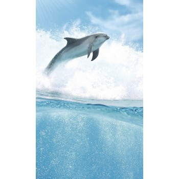 Dolphins B komplet 4*(25x60)