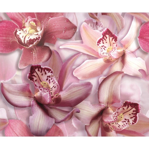 Flowers Orchid lila komplet 2*(25x60)