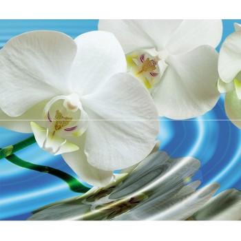 Water Garden A komplet 2*(25x60)