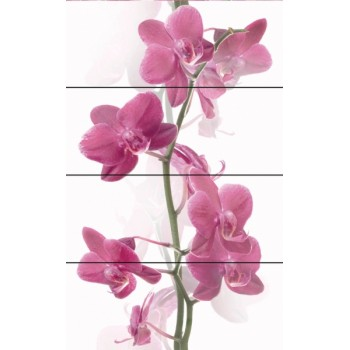 Komplet Orchis 80x50