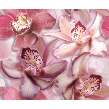 Orchid Lila komplet 2*(25x60)