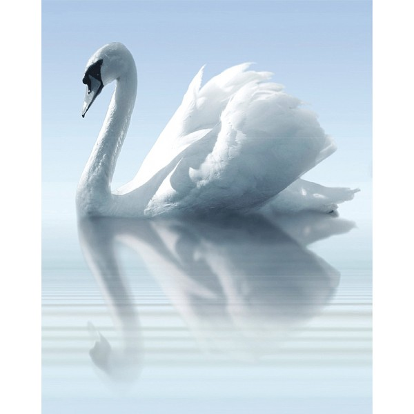 Water and Swan A komplet 3*(25x60)