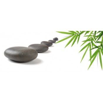 Bambu and Stones 1 centro 20x50