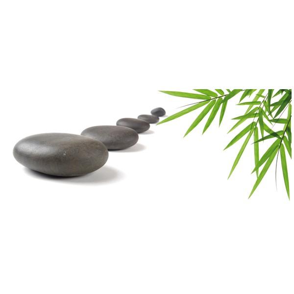 Bambu and Stones 1 centro 20x50