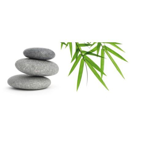 Bambu and Stones 2 centro 20x50