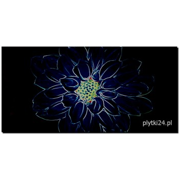 fluorescent flower blue inserto 29,7x60