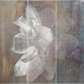 Manteia Colour Panel A 60x60