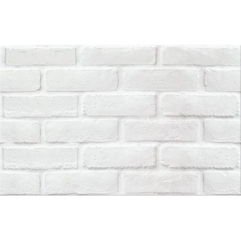 WIKA PS213 WHITE STRUCTURE MAT 25X40 G1