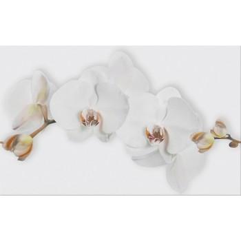 MARISOL WHITE INSERTO FLOWER 25x40