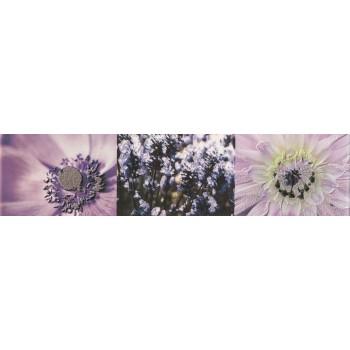 Maxima violet 2 44,8x10,0...