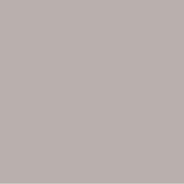 Cielo e Terra Marrone MAT 59,8x59,8 GAT.I