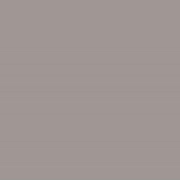 Cielo e Terra Griggio MAT (RAL D2/0407005) 59,8X59,8 GAT.I