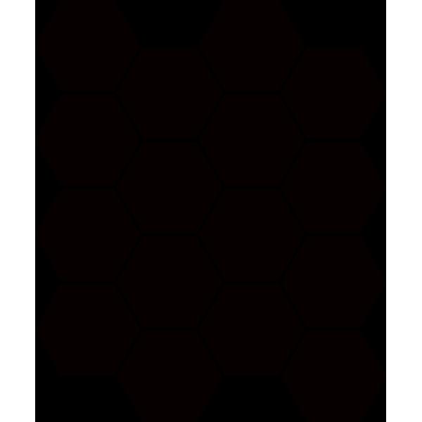 Uniwersalna Mozaika Prasowana Nero Paradyż Hexagon 22x25.5 GAT.I